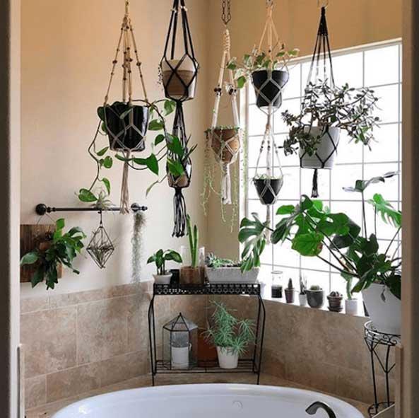 گل و گیاه مناسب برای سرویس بهداشتی
